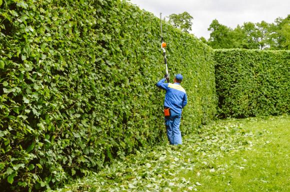 Entretien de jardins pour les particuliers à Pont-Evêque